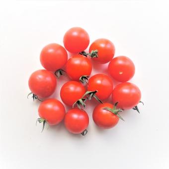 木村多江 美容とダイエット方法プチ(ミニ)トマト